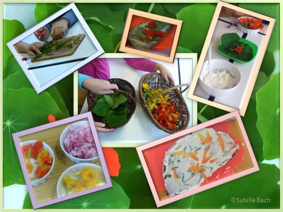 Kräuterfrühstück