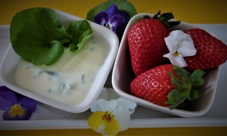 Ampfer-Erdbee-Creme